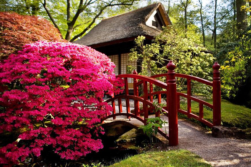庭園にかかる橋
