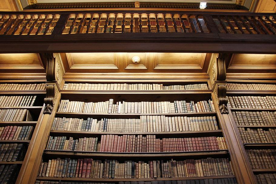 Biblioteca vecchio stile