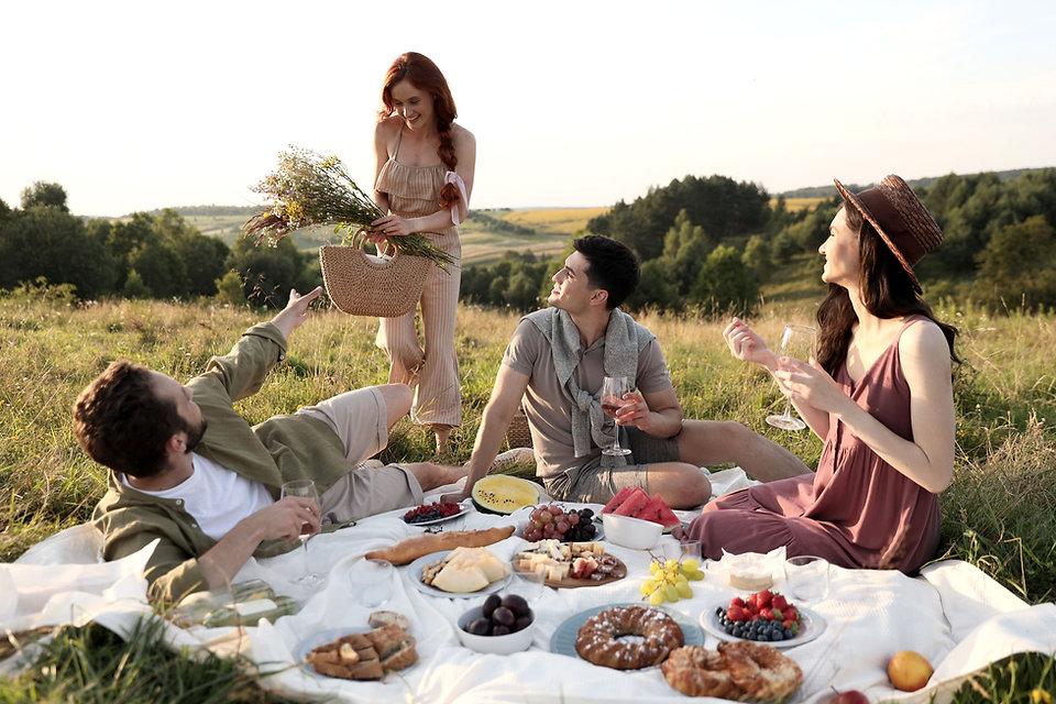 Freunde, die Picknick haben