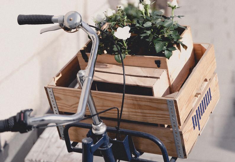 Caja de cesta de bicicleta