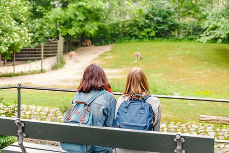 Studenten in het park