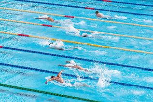 Course de natation