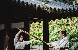 Pratique des arts martiaux