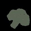 ブロッコリ