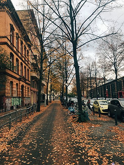 City in the Fall