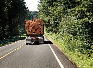 Truck of Logs