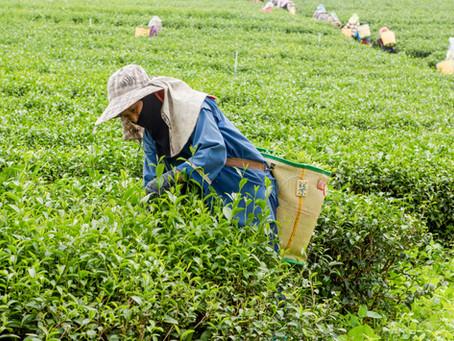 農業のデジタル化