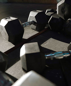 Gym dumbells weights