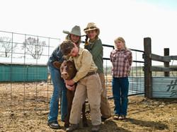 子牛を持つ子供