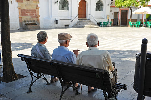 Friends on a Bench