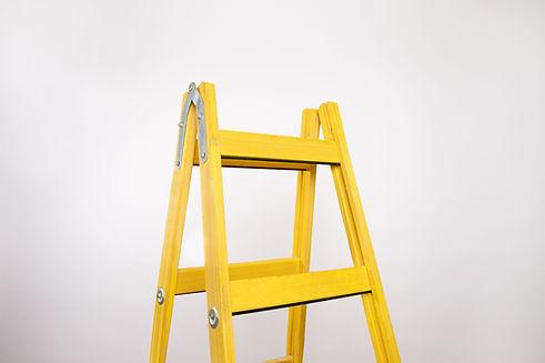 Wooden Ladder little giant