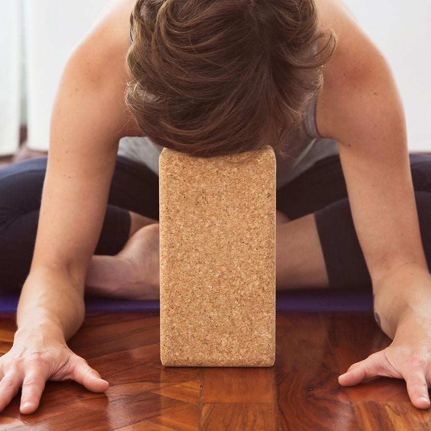 Restorative Yoga w/ Live Music