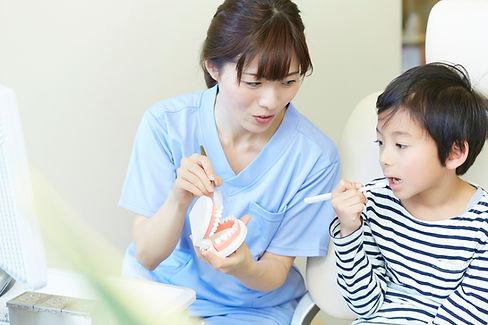 歯医者の歯磨き指導