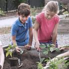 Childrens Garden Workshop