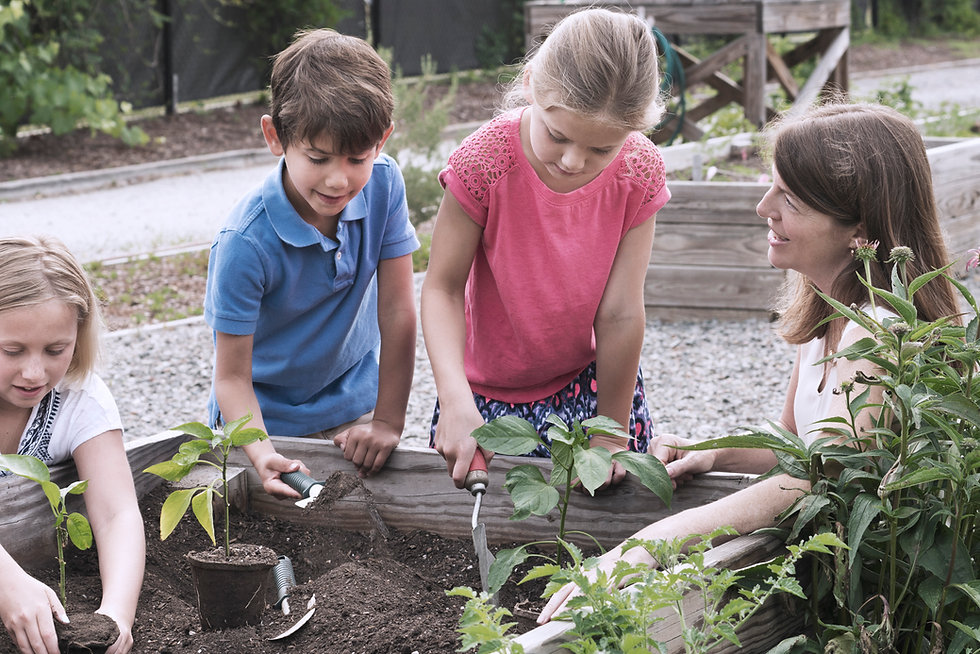 Clase de jardinería