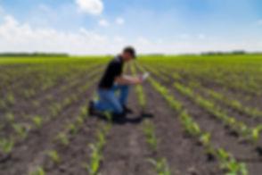 タブレットを持つ農学者