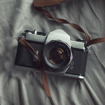 cámara de la vendimia