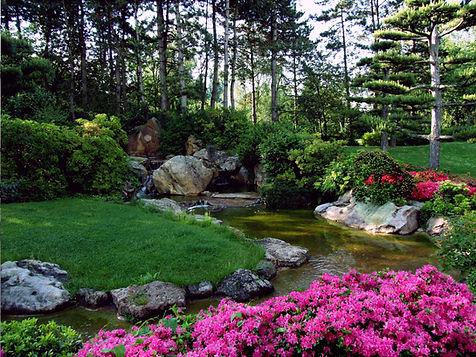 美しい自然