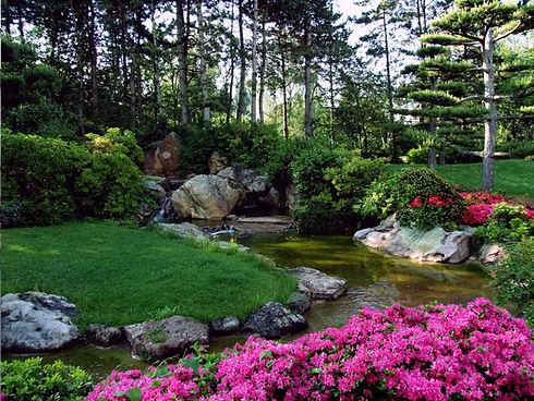 Природный пруд