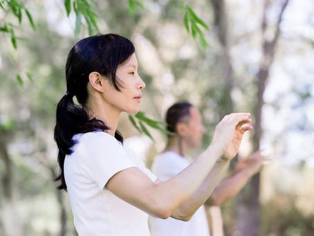 een aangename nieuwe video tai chi les