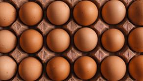 תולעים (אדומות) וקליפות ביצים (לבנות)