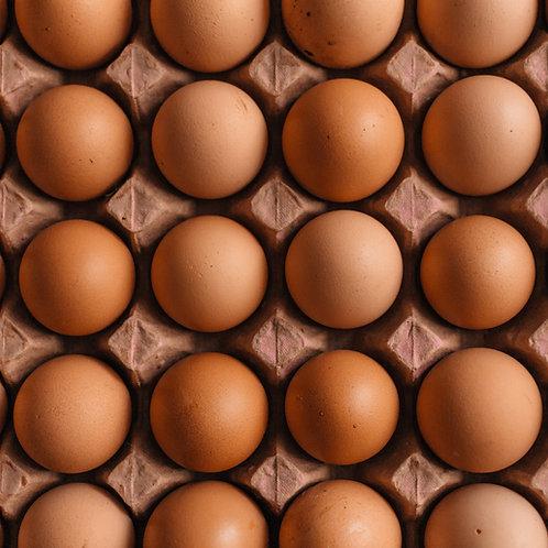 Weekly Subscription Tray 30 Free Range Organic Eggs