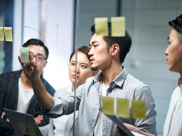 Effective Information Management and Governance