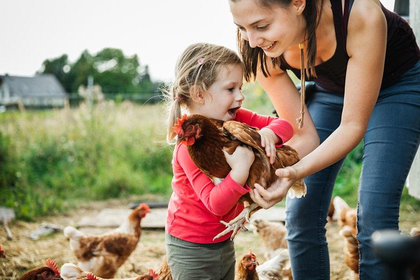 Chica en granja de pollos