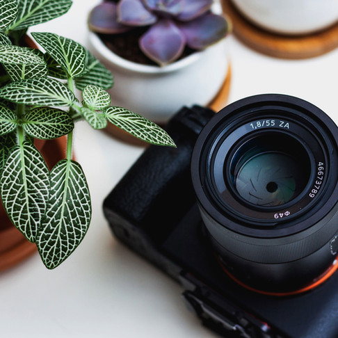 Recommended Gear for a Beginner Photographer