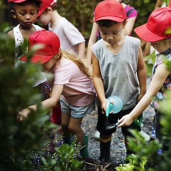Educational Gardening
