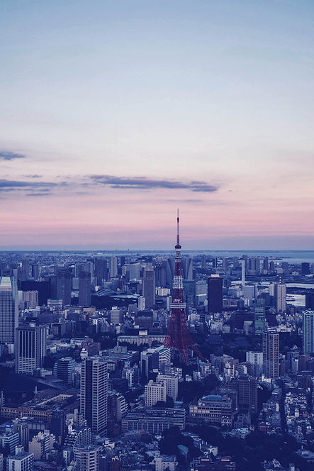 都市の航空写真