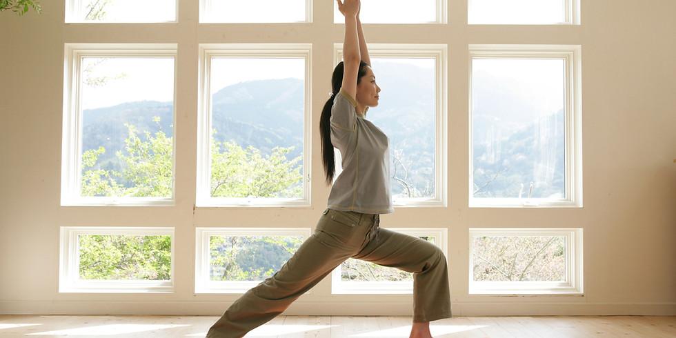 Yoga Foundation Series - Part 2