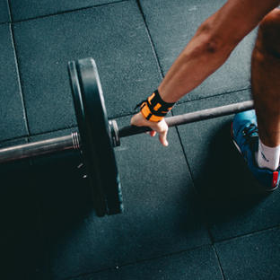 Muscle Building Circuit