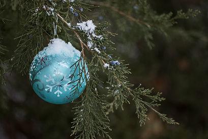 Boule sur l'arbre
