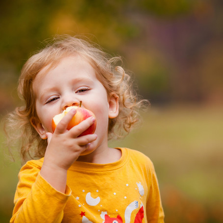 Children's Nutrition: Healthy Lunch and Snack Ideas