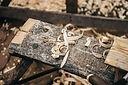Bronscheiding hout