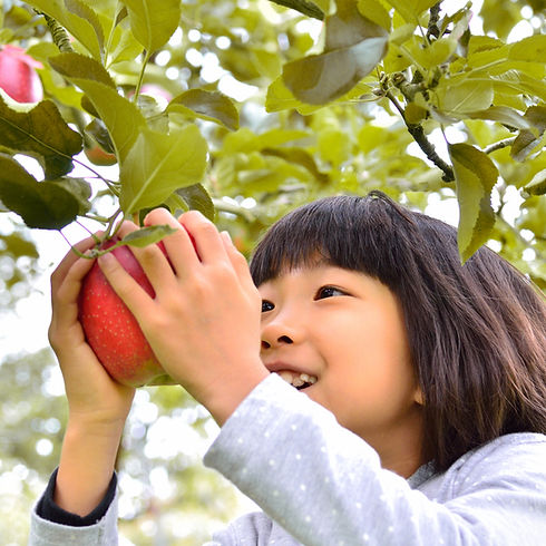 Girl Picking Apple