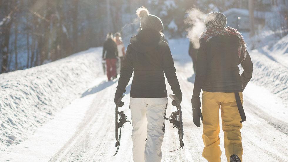 Happy, Healthy Holiday Tips  Winter 2020