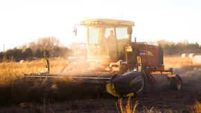 Novo FIAGRO, importante fundo para o Agro Negócios