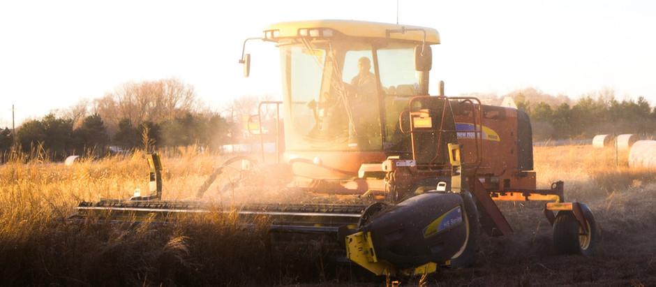 No dia da agricultura especialista de Holambra fala dos desafios dessa área no Brasil