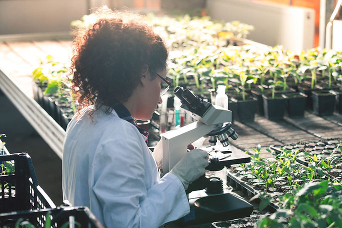 Biólogo vegetal