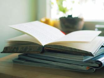 עריכת ספרים: עריכה ספרותית, עריכה לשונית ובלשנות