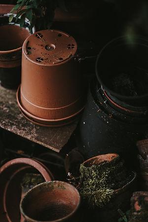 Pots de fleurs vides