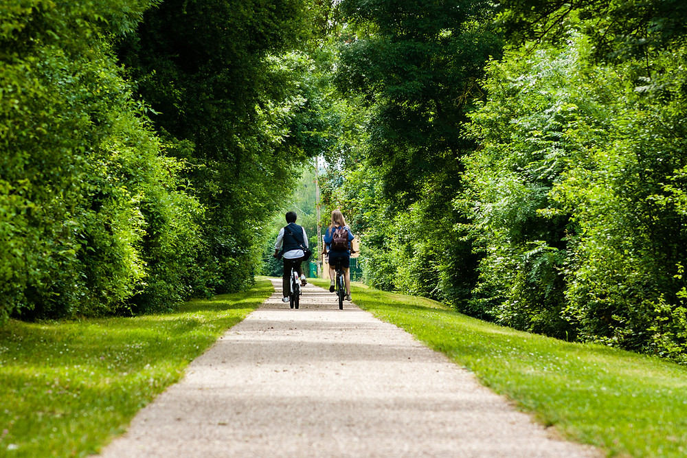 two people biking the park forest trails