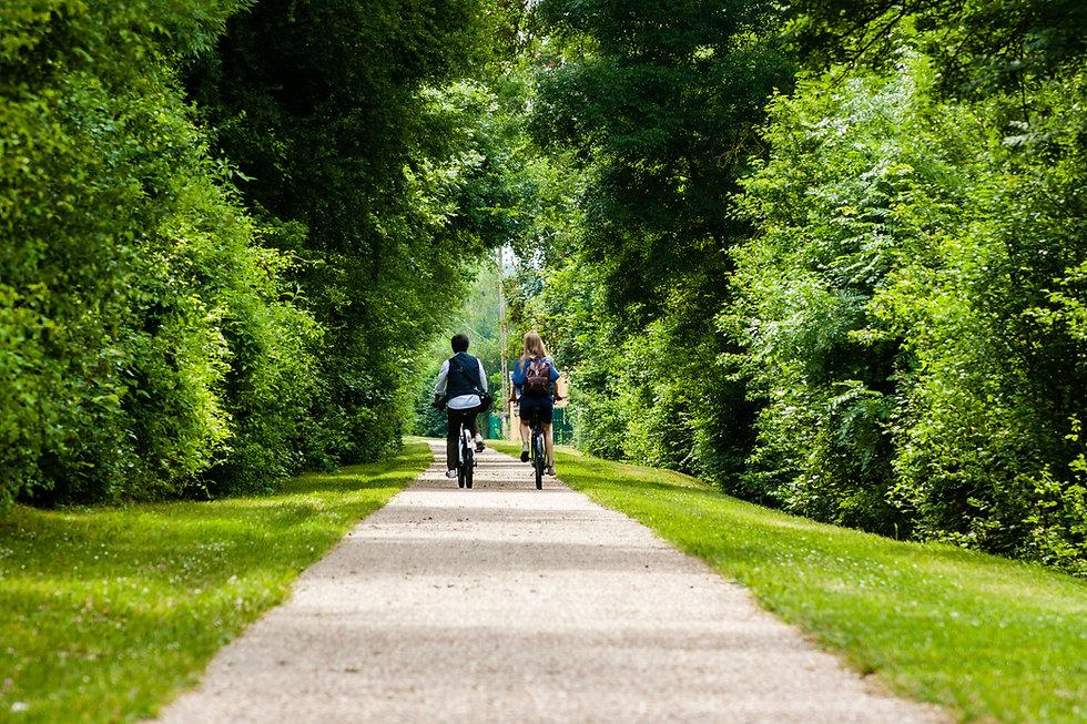 Em bicicletas