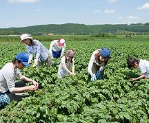 10 юни ден на фермера-lubkailievakk.com