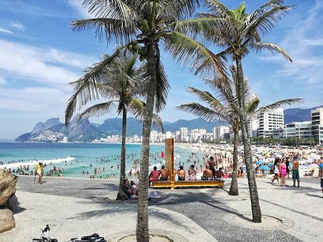 Palmeiras na praia do Rio de Janeiro