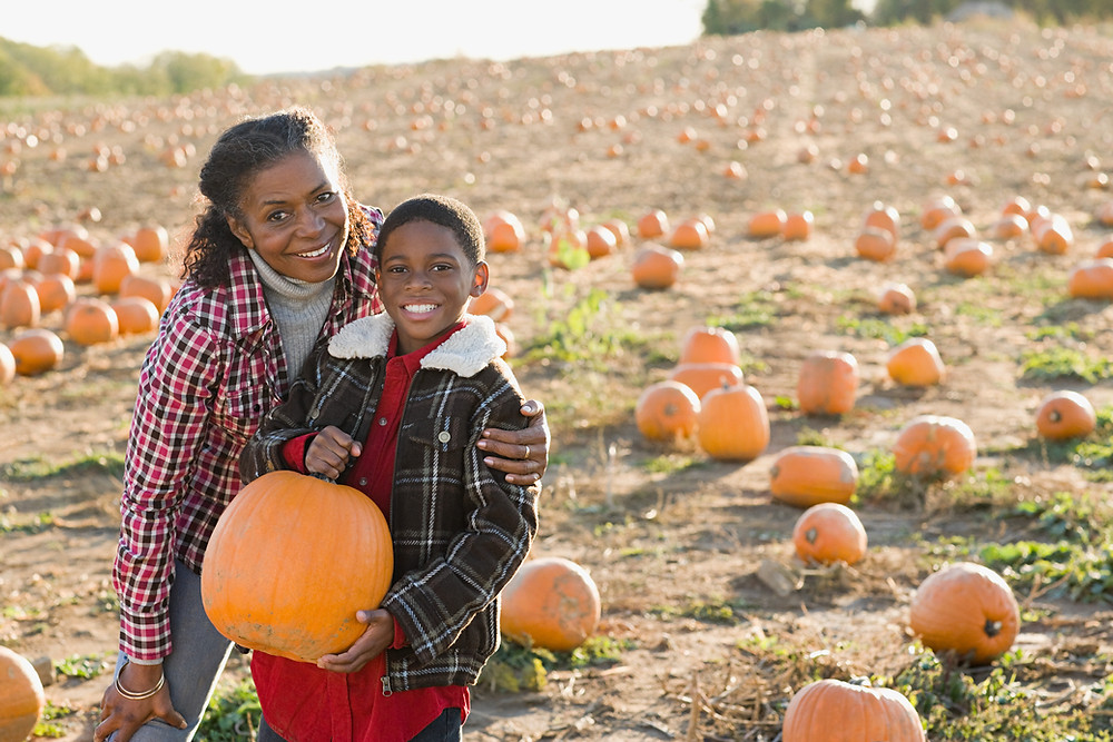 woman and child in pumpkin patch near park forest, Illinois
