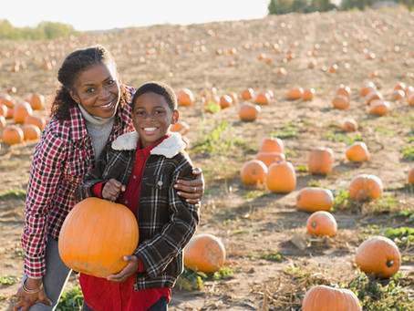 Top 5 Places to Visit in the Chicago South Suburbs This Fall