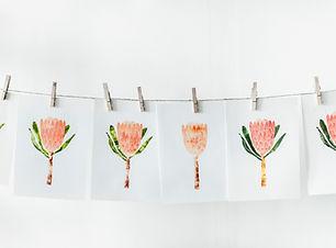 Orange Flower Prints